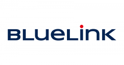 Bluelink Services